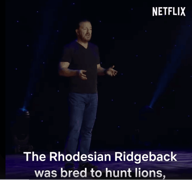 Krótko i na temat Rhodesiana ;-)